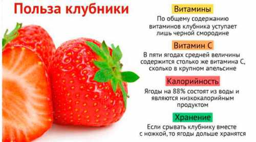 Ведь клубника не только сочная и вкусная, это еще и очень полезный продукт