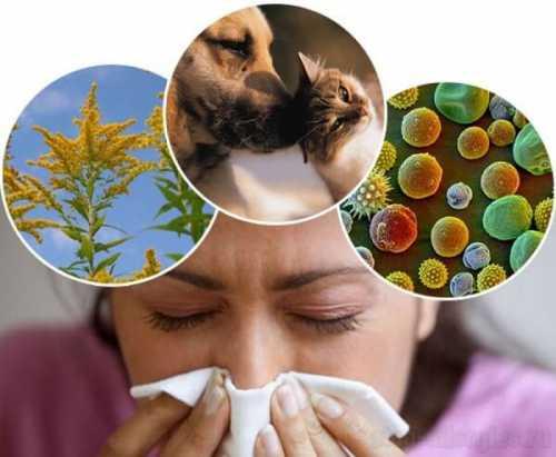 Как лечить детскую пищевую аллергию народными средствами