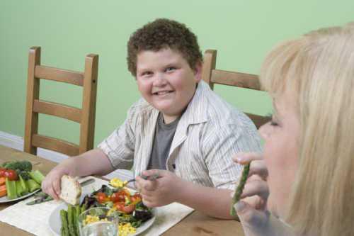 Детское ожирение Причины