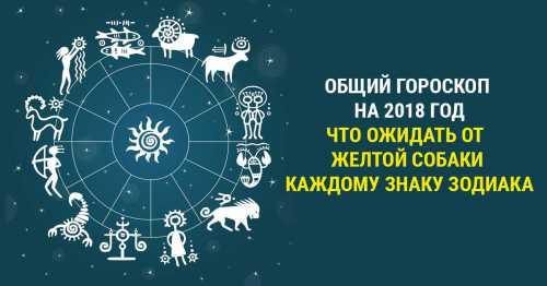 Гороскоп на сегодня, 15 декабря 2016 года, для всех знаков Зодиака