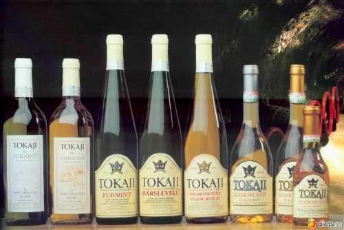 Вина Венгрии Какое выбрать вино к праздничному столу