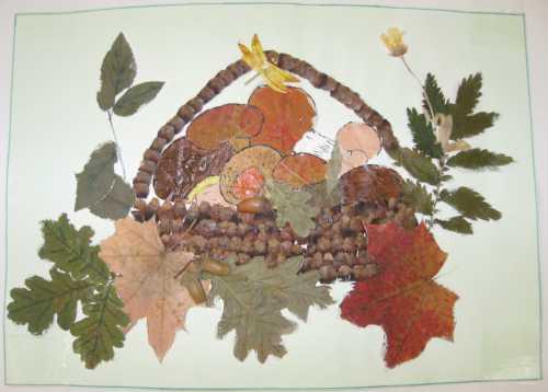 Можно сушить листья между страницами книги