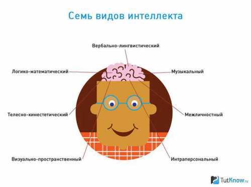 Типы интеллекта у детей