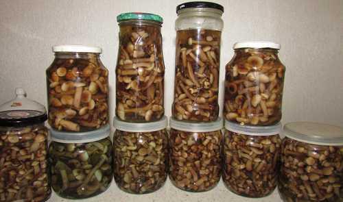 Заполните грибами банки доверху, залейте маринадом